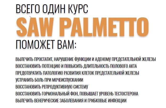 со пальметто купить в казахстане