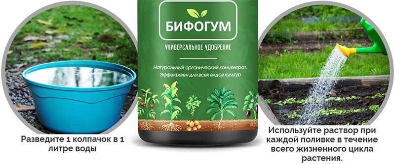 Органическое удобрение Бифогум 160 мл - фото Бифогум инструкция