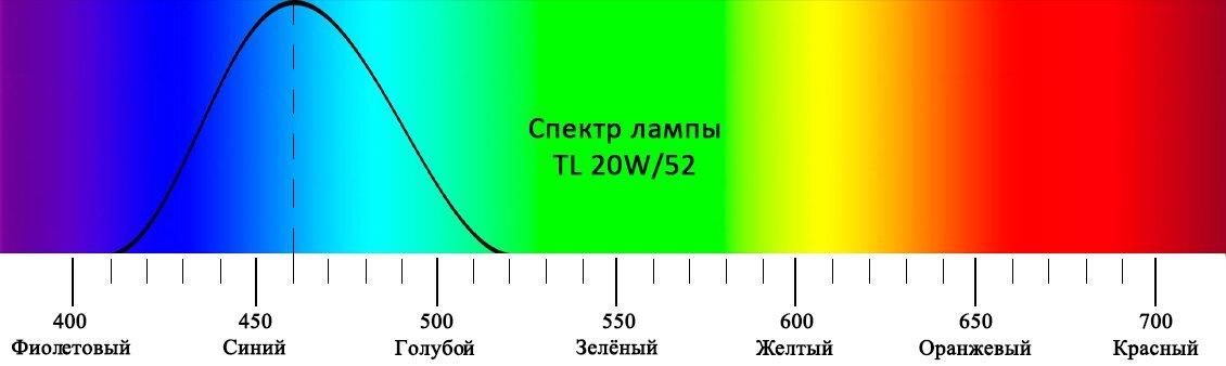 Фотолампа Philips 20W/52 от желтушки - фото pic_b760c25320af58b_1920x9000_1.jpg