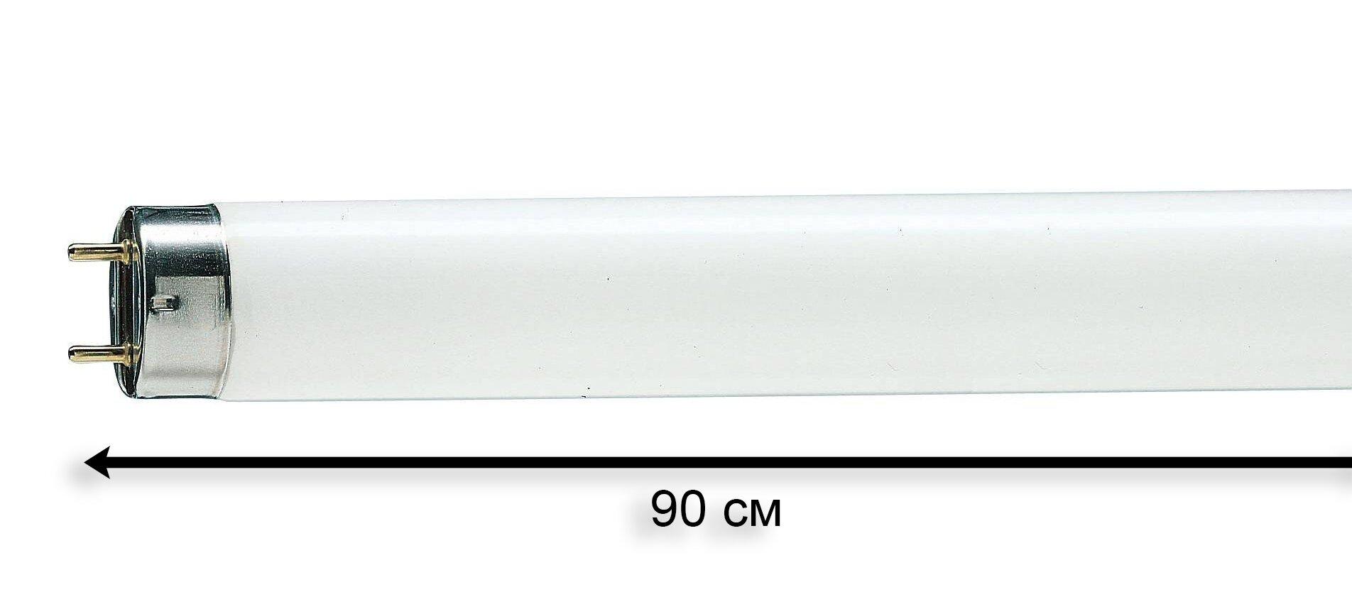 Лампа люминесцентная белая T8 30W G13