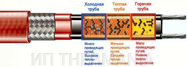 pic_4bc07db97b02d7a_700x3000_1.jpg