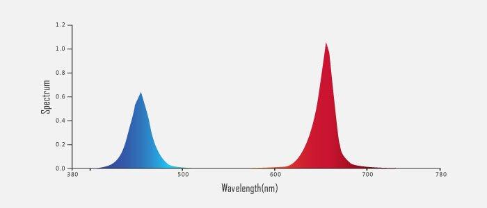 Фитолампа линейная 15W 60 см красный: синий 4:1 - фото spektr_osvesheniya