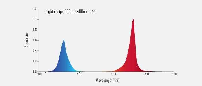 Фитолампа линейная двухсторонняя 150W водонепроницаемая IP65 - фото спектр фитолампы 150 W