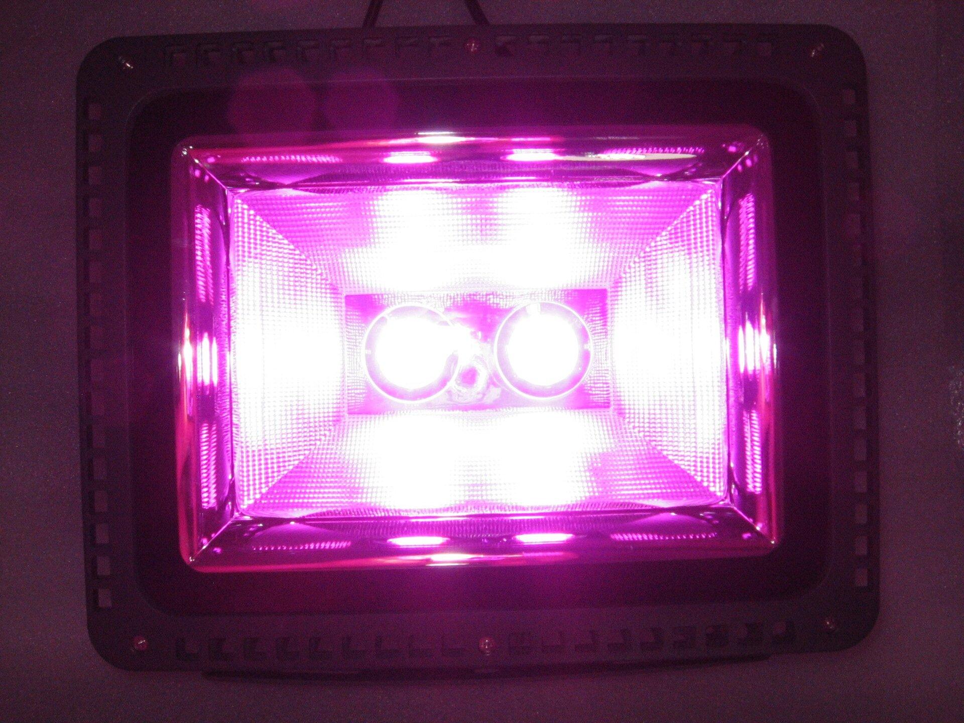Фитопрожектор полного спектра 100 Ватт для гроубоксов и теплиц - фото фитопрожектор полного спектра 100 ватт