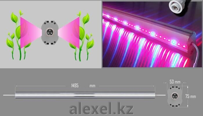 Фитолампа линейная двухсторонняя 75W водонепроницаемая IP65 - фото fito lampa 75 W