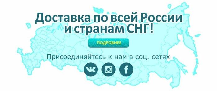 Доставка по всей России и странам СНГ - фото pic_6565da6e304576f_700x3000_1.jpg