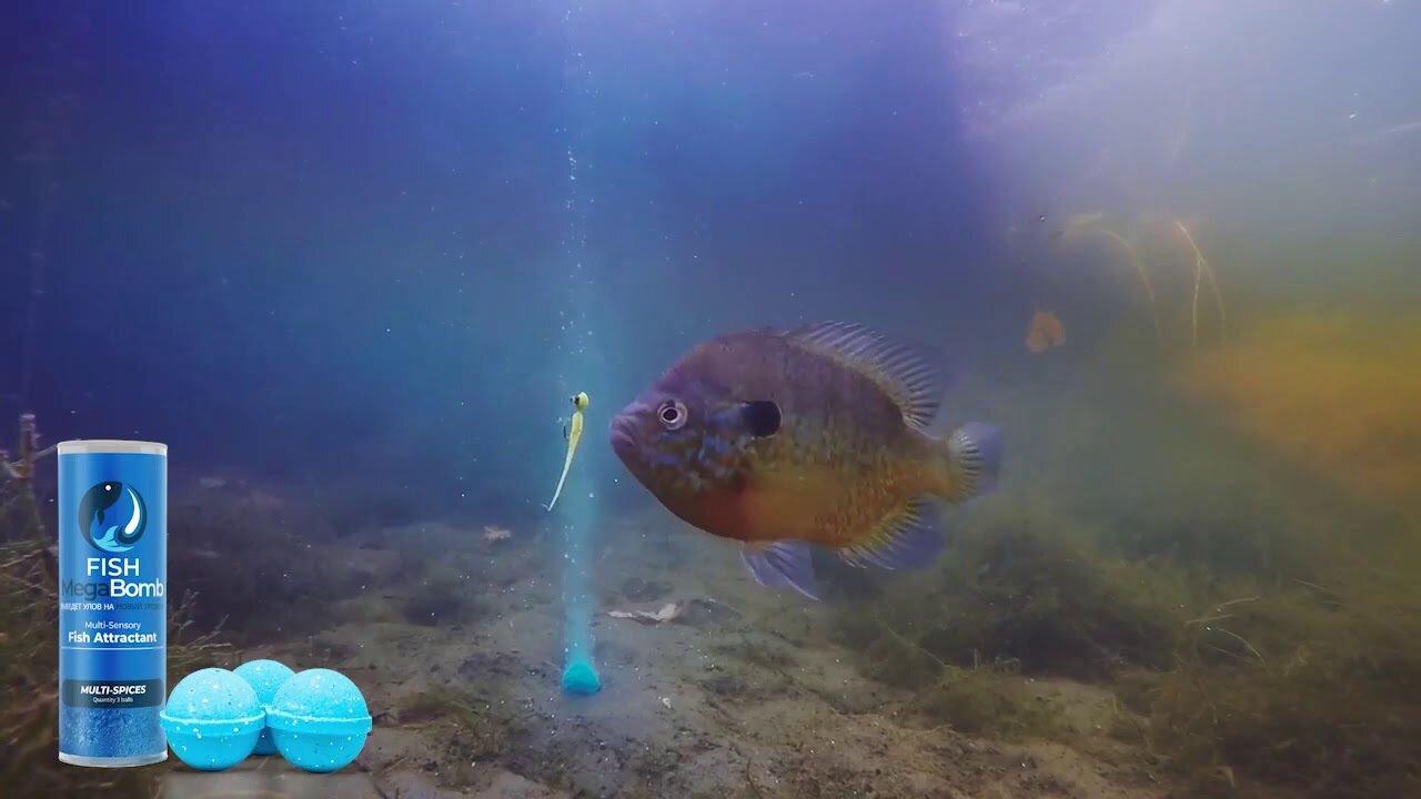 Fish MegaBomb инновационная приманка для рыбалки в Каменце-Подольском