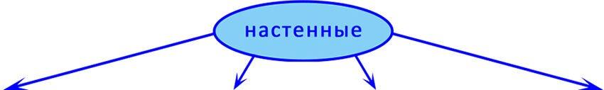 Настенные - фото pic_d4c49aac26f9ae7_1920x9000_1.jpg