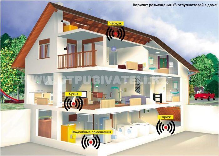 Варианты размещения ультразвуковых отпугивателей грызунов в доме