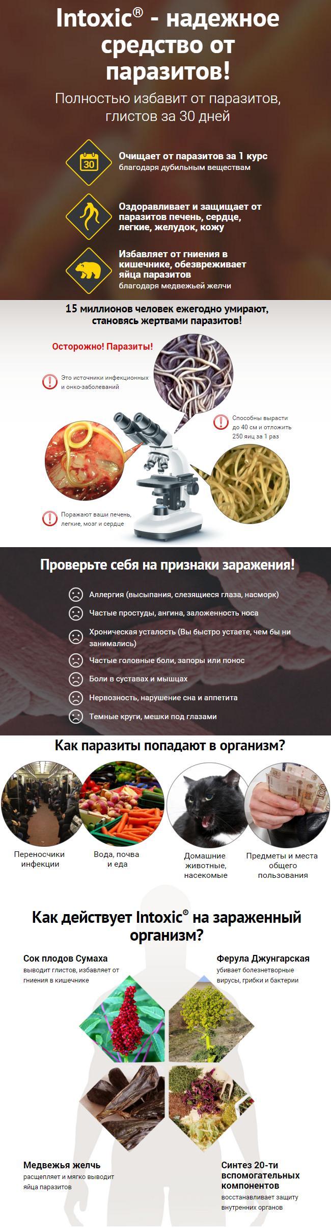 Средство Интоксик от глистов и паразитов - фото 1